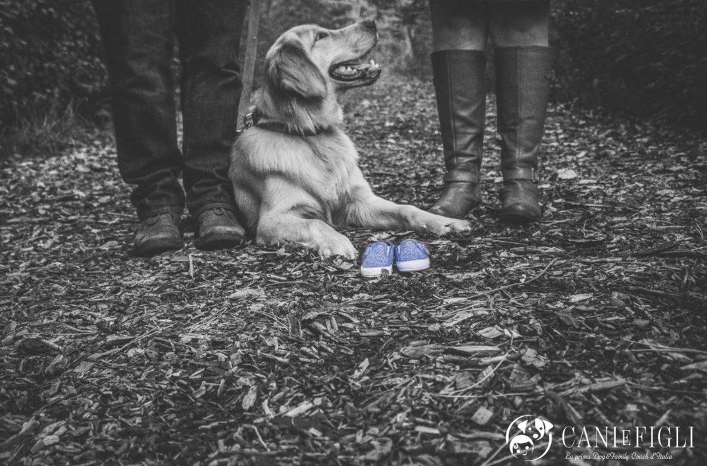 percorso cani e figli
